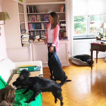 Carina Axelsson Writing Room